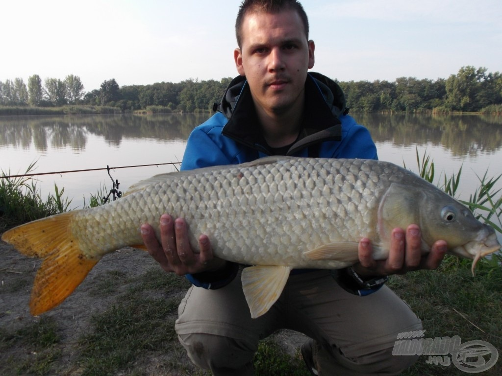 5,90 kg-os tőponty