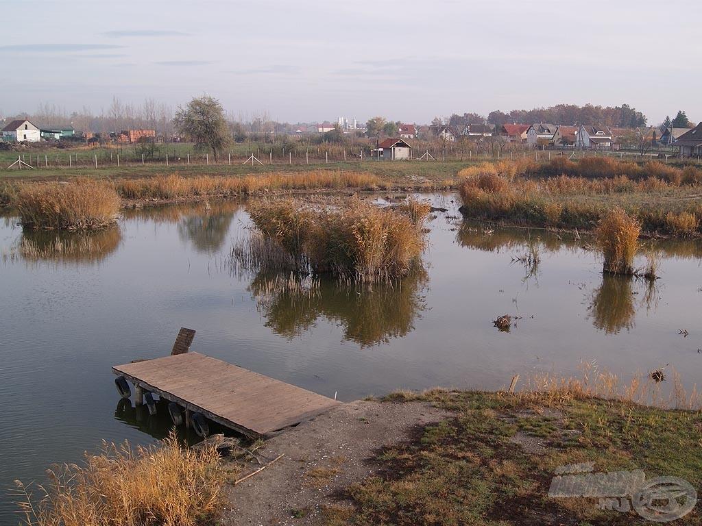A vadregényes kis tó