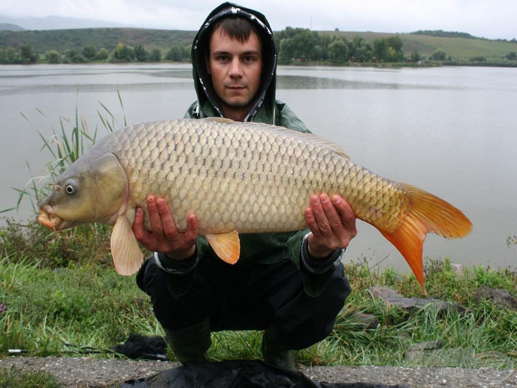 A Ryder Carp első hala