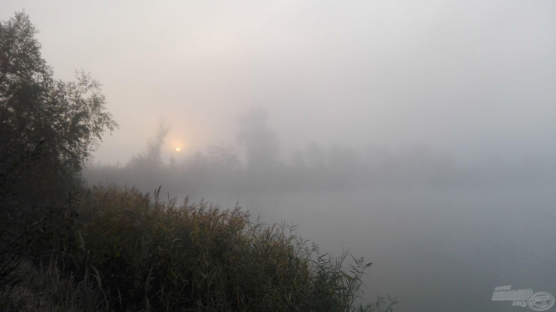 A felkelő nap próbálkozása az egyre sűrűsödő ködben...