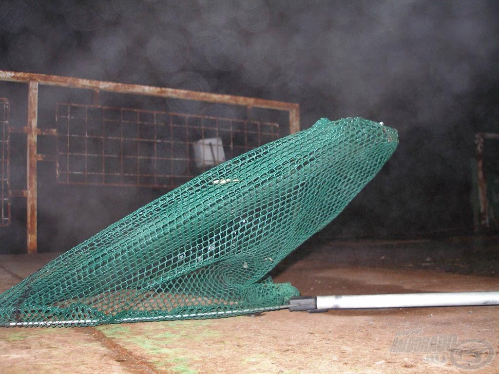 A fagyban Tibi hálója is formára fagyott :-)
