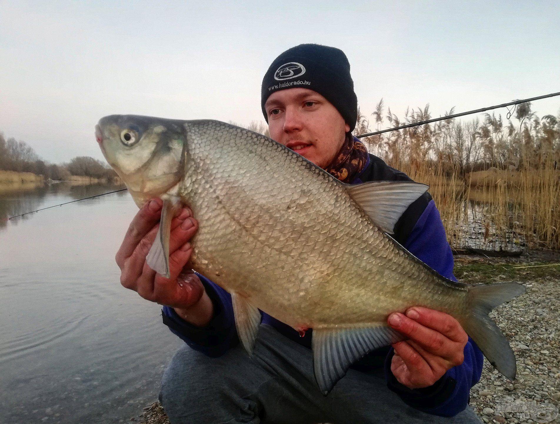 A mai nap legnagyobb hala