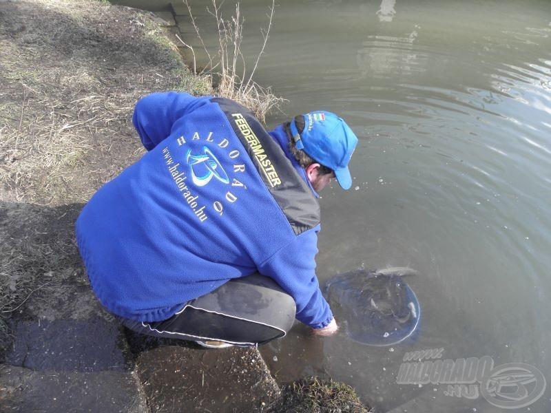 A halak ilyenkor kiszolgáltatott helyzetben vannak, vigyázzunk rájuk!