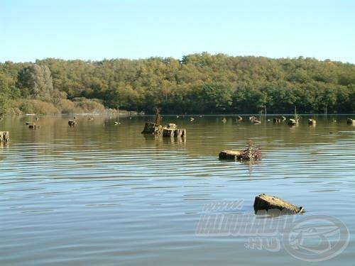 A Tüttöspusztán található tó látványa minden horgászt megigéz! Hogyan lehet itt feederbottal horgászni?