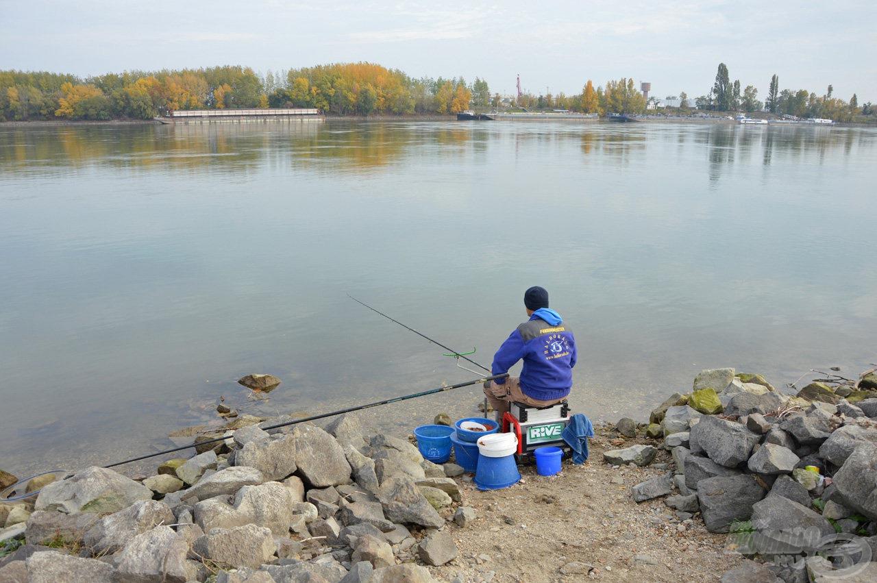 Elképesztő mennyiségű halat rejt a Duna