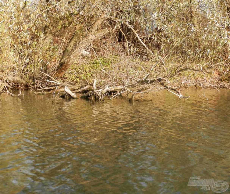 Sok ígéretes hely van a folyókon is, ahol szép csukákat foghatunk