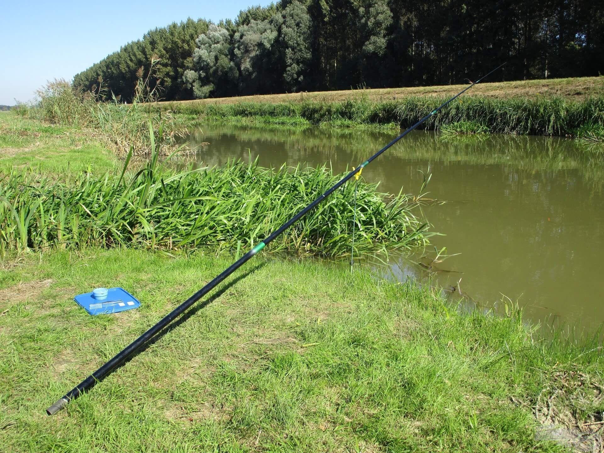 Igaz, hogy a feederbotos horgászat megszállottja vagyok, de szívesen viszek magammal spiccbotot, ha megfelelő a vízállás