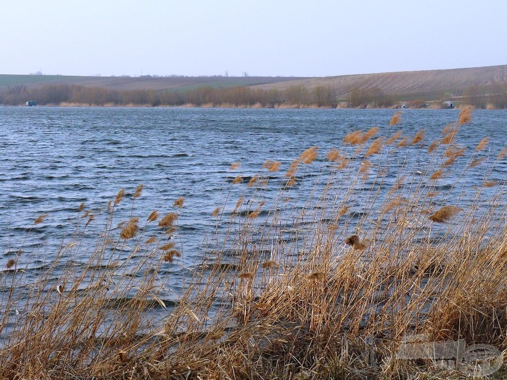 Szemből viharos szél korbácsolta a tó felszínét
