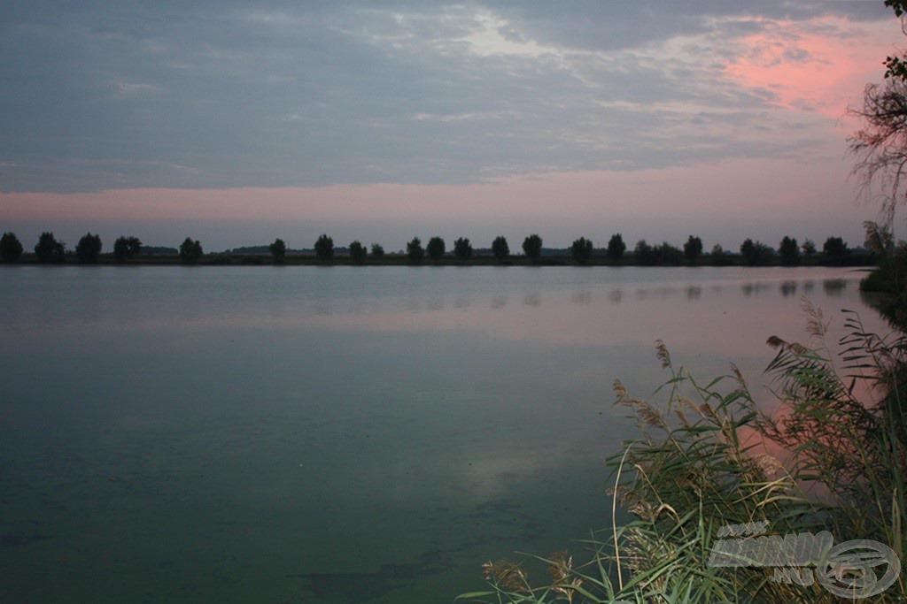 Kora hajnalban érkeztem a tóra. Kíváncsian vártam, hogy milyen eredményt tudok elérni ezen a számomra ismeretlen egyesületi vízen