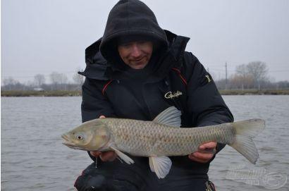 Éljen Petőfi Sándor, gyerünk horgászni!
