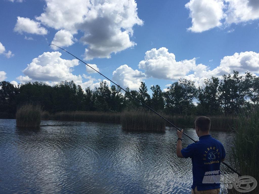 A rengeteg akadó miatt, ha volt lehetőségem, magasra tartott bottal fárasztottam, így jobban kontrollálhattam a menekülő halat