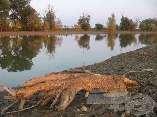 Nem kell a horgászathoz sok minden, csak egy víztükör, például a Temes…