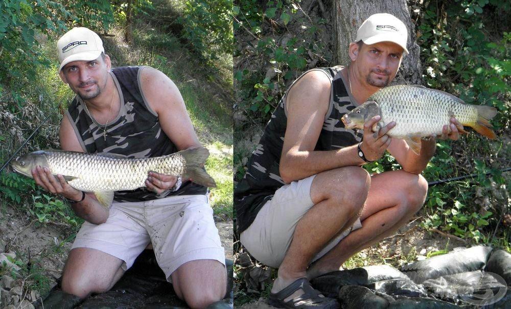 A nyári horgászataimon ez a keverék volt a legjobb, sok szép halhoz és élményhez juttatott