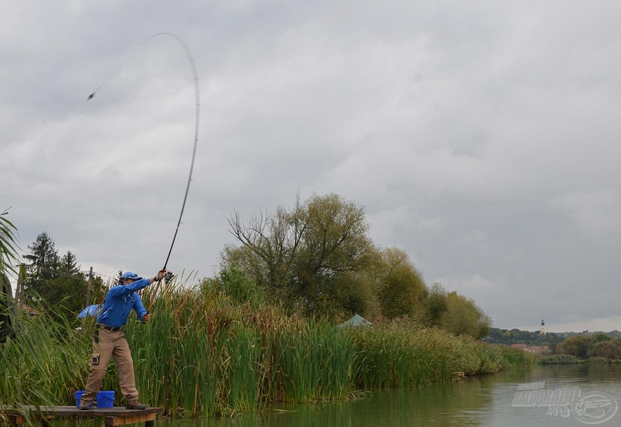"""Ez már szállóige, de igaz! """"<i>Harsányban, ha nem dobsz 120 métert, nem fogsz halat!""""</i>"""