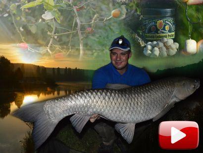 Feederbottal a Gyermelyi Horgásztavon – Az őszi front ajándéka