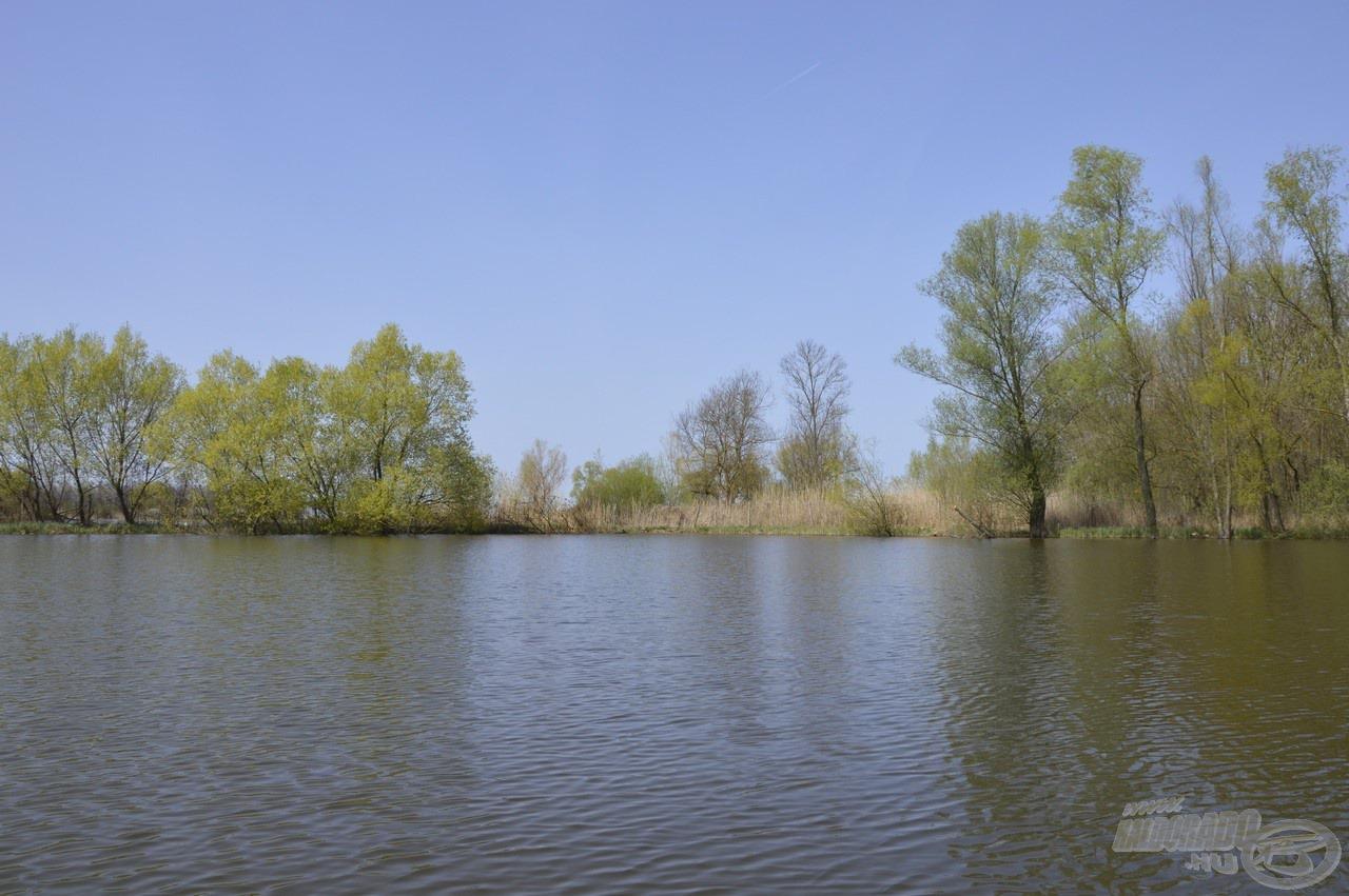 A Nemesnádudvari Tőzeges-tó jellemzően vadregényes, természetes közeget sugalló környezettel rendelkezik
