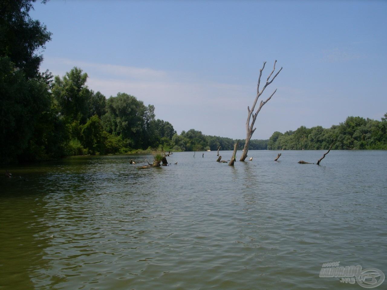 A Tisza-tó egyik legszembetűnőbb karakterét a vadregényes táj mellett a számtalan haltartó hely adja
