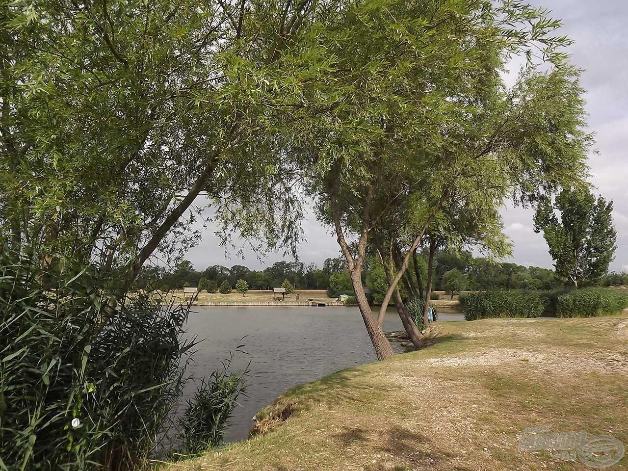 A tőkési- tó