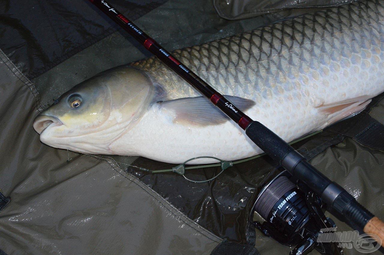 Egy ilyen hal fárasztása már rávilágít a lehetőségekre, amik ebben a felszerelésben rejlenek!