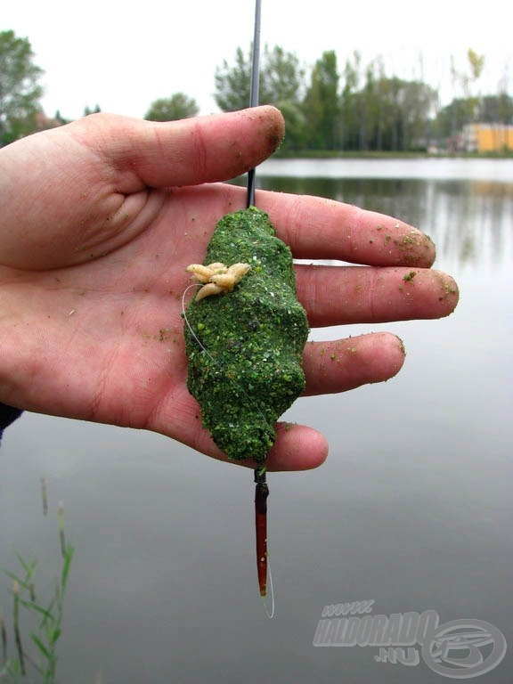 A Fűszeres Halas etetőanyag mellett felkínált csonticsokor rendkívül tetszett a halaknak