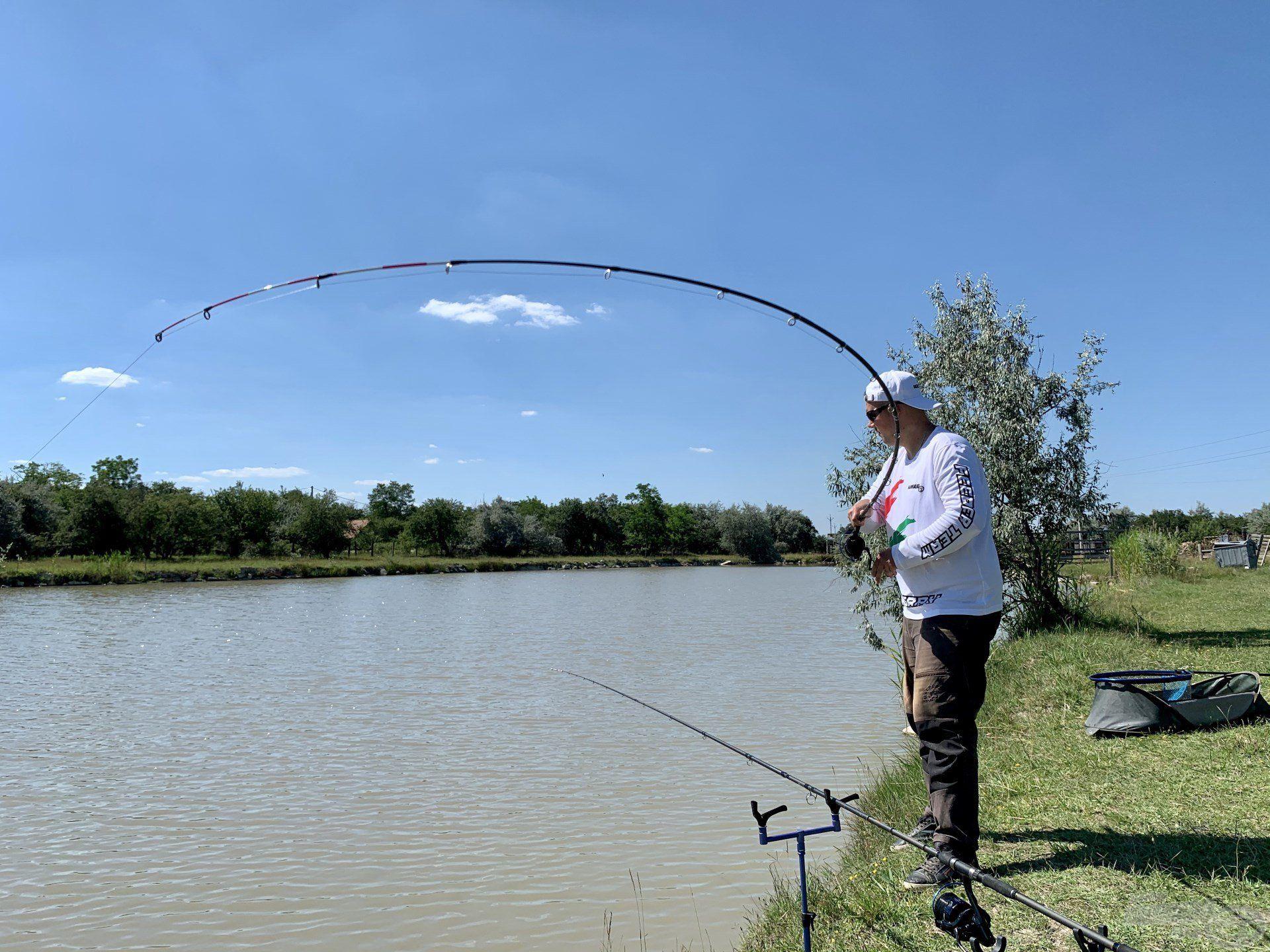 Az átlagos méretű halak után ismét egy termetes ponty küzdött a horgon…