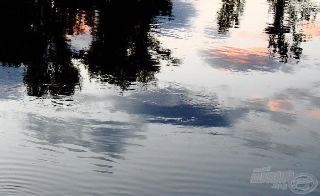 A burvány a víz alatt jelzi azt a követ, ami mögött lapult ez a süllő… érdemes figyelni az ilyen jelekre…