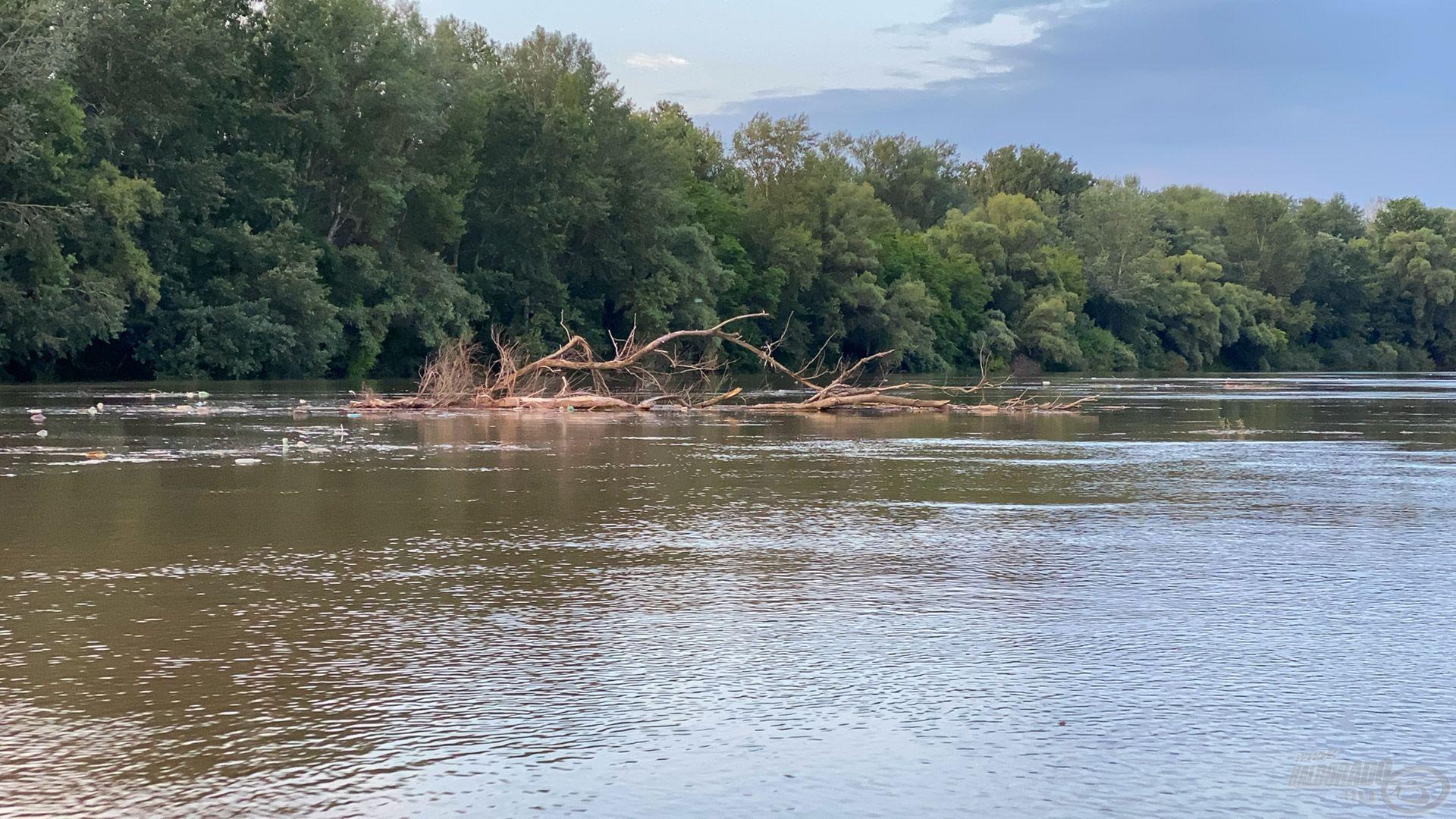 Az áradások eleje mindig sok-sok szeméttel és a víz lehűlésével jön