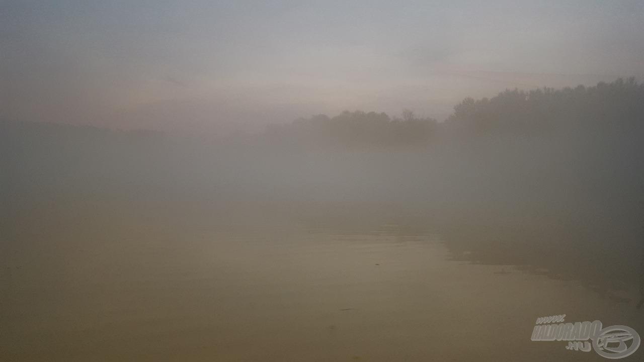 Kora reggel igen nagy köd fogadott minket a kikötőben…