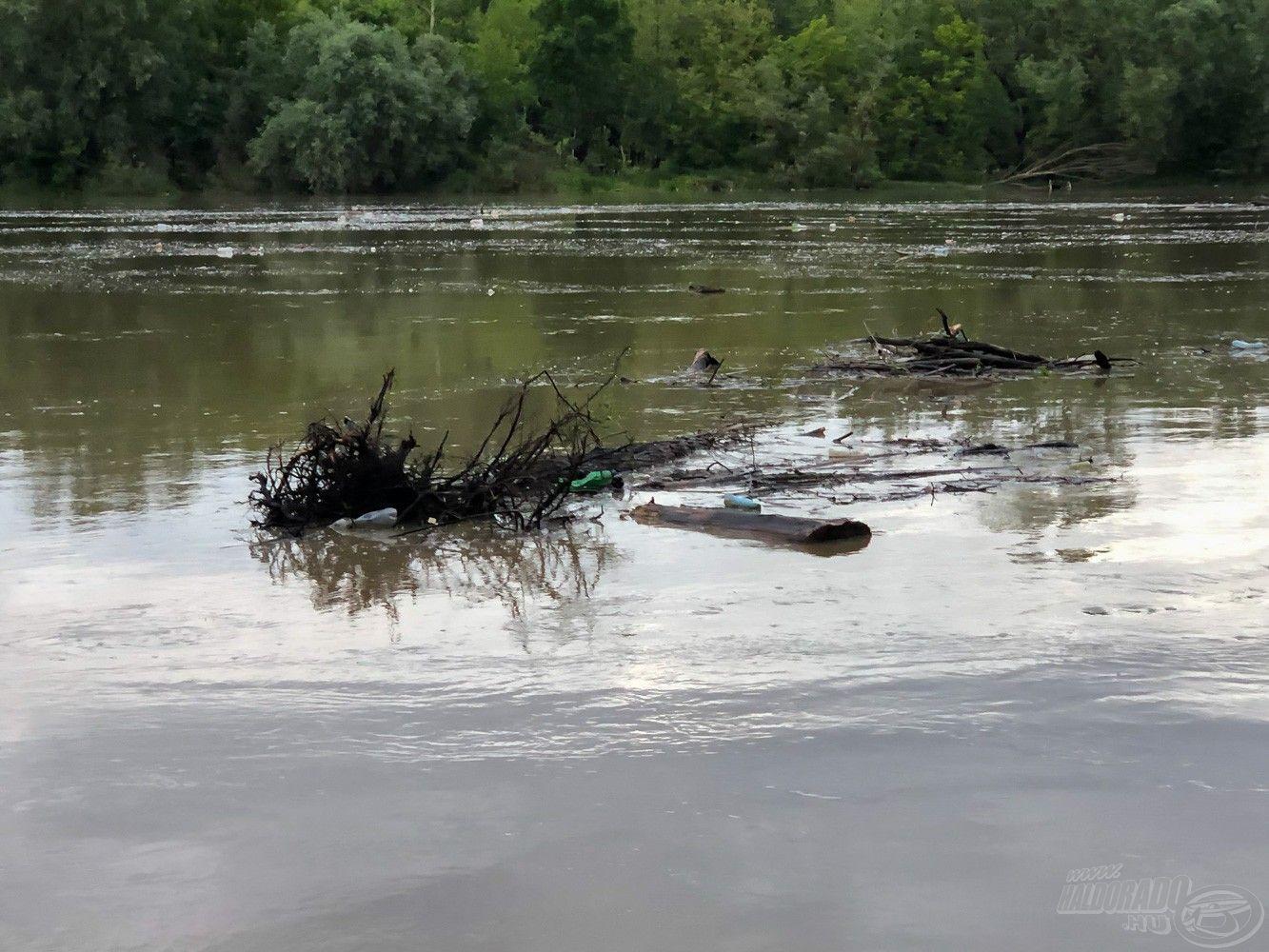 Az áradás elején lehűlt a víz 15-ről 12 fokra, majd lassan elkezdett visszamelegedni, az eleje nullás pecákat tartogatott