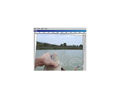Fényképek a monitoron