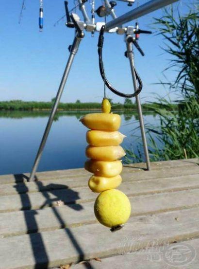FermentX a nagyhalas horgászatokhoz