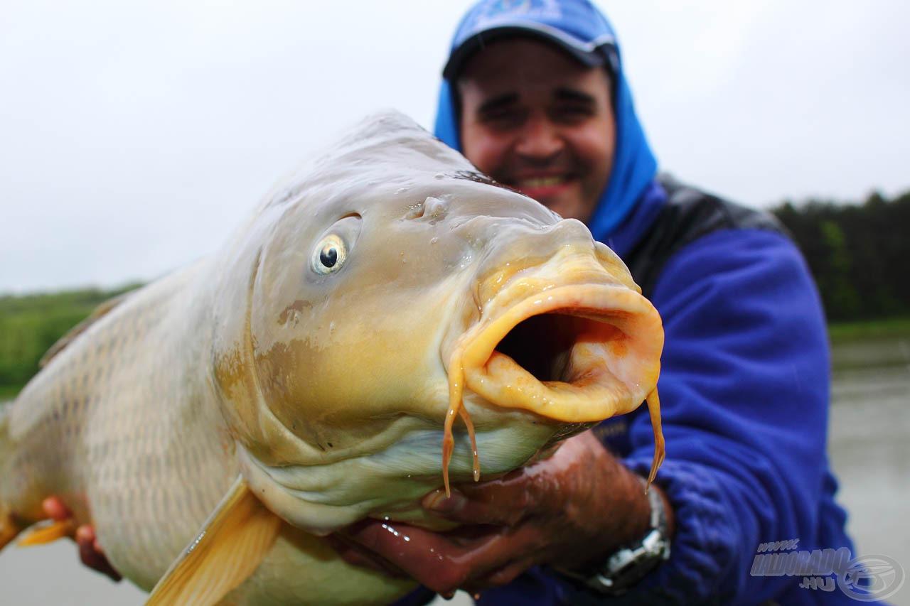 """E hal érdekessége az volt, hogy két hosszabb bajsza több """"nyúlvánnyal"""" is rendelkezett"""