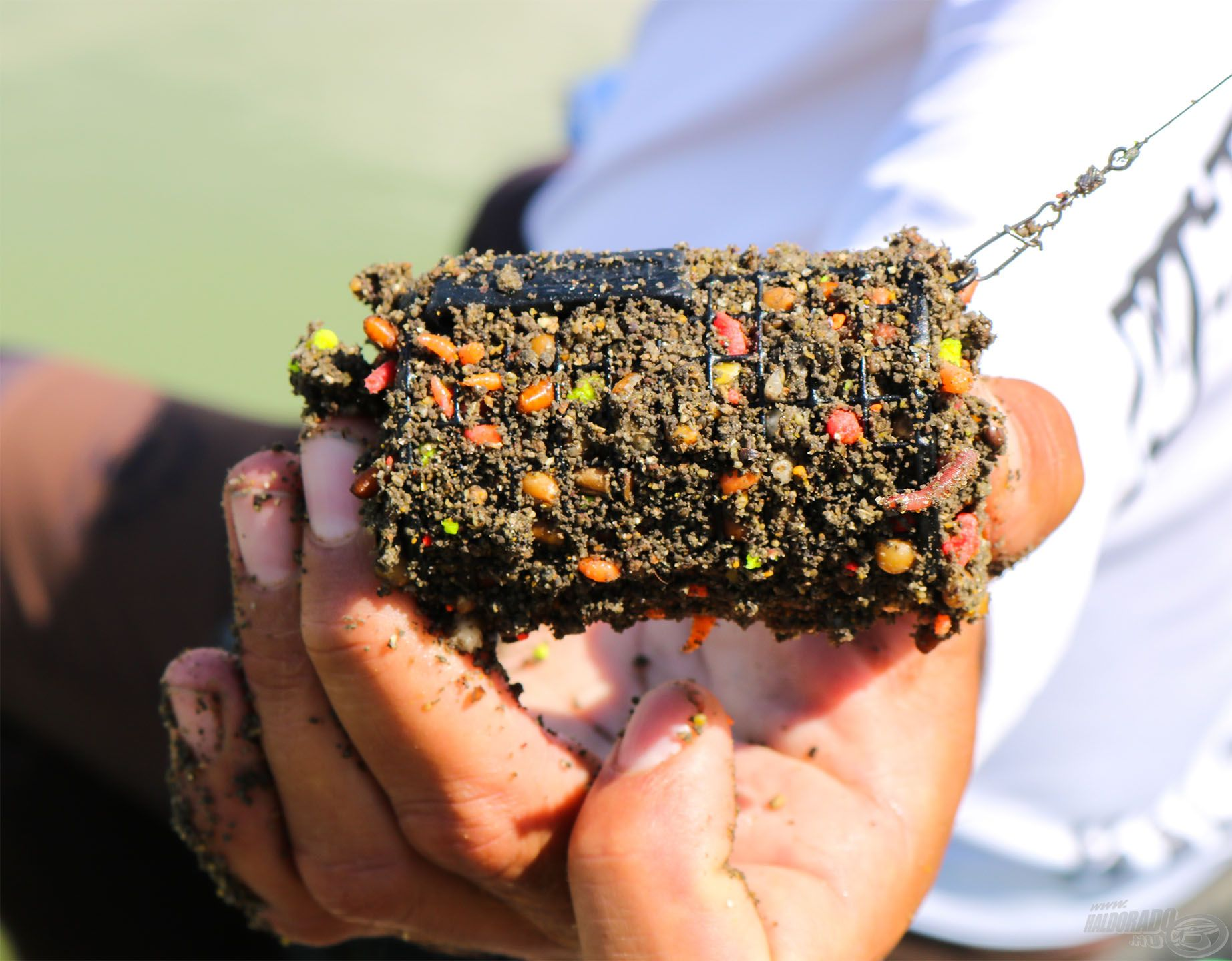Ebből a tartalmas anyagból 10-12 kosárral is érdemes alapozó etetéskor betermelni