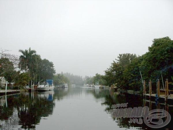 A világhírű Everglades mocsár.