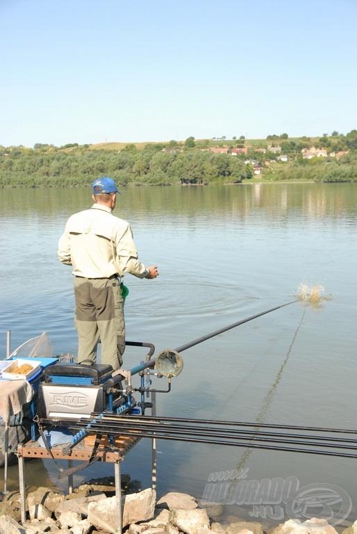 A jól megnehezített etetőanyag gombócokat a bot spiccéhez is dobhatjuk, hiszen alig sodorja el a folyóvíz