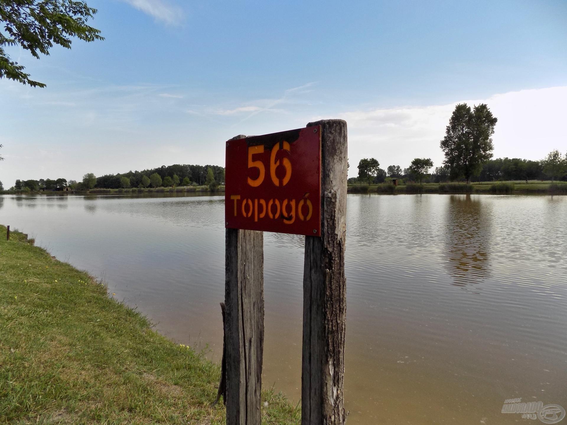 Tikkasztó meleg, üres horgászhelyek. A délutáni órákban érkeztem a tóra, és a helyválasztásom ezúttal a tó hátsó részében található, 56-os számú helyre esett