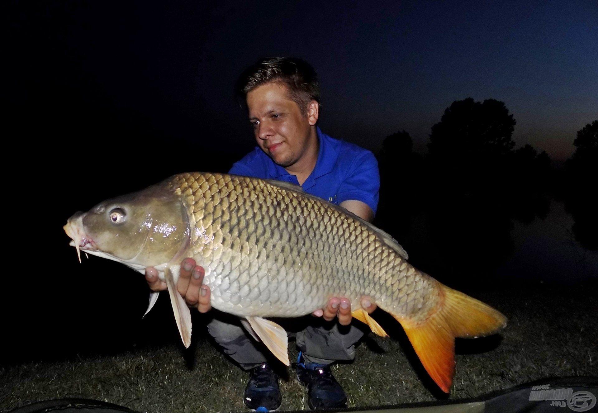 … majd a sötétség beálltával végre megérkeztek azok a halak, akikért érkeztem. Ez a gyönyörű pikkelyes az első nagytestű halam ezen a vízterületen. Öröm volt kézben tartani egy rövid időre