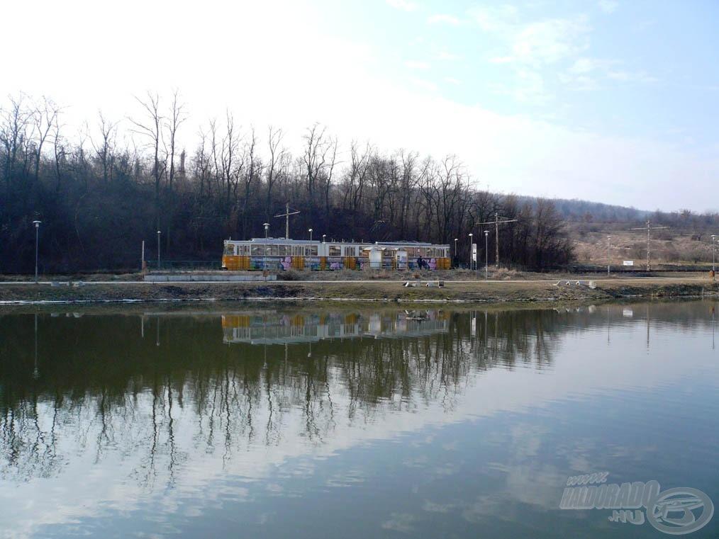Normál esetben a tó könnyen megközelíthető tömegközlekedéssel (41-es villamos)
