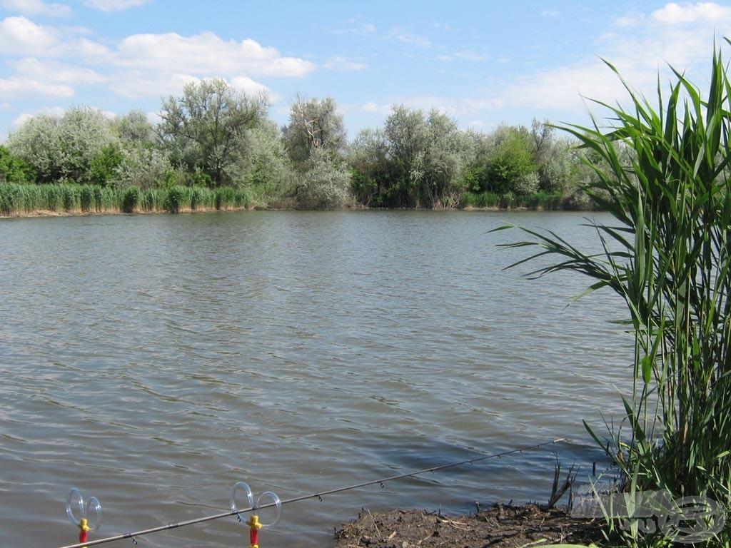 A helyszín a Benta horgászpark 7-es számú nagy tava