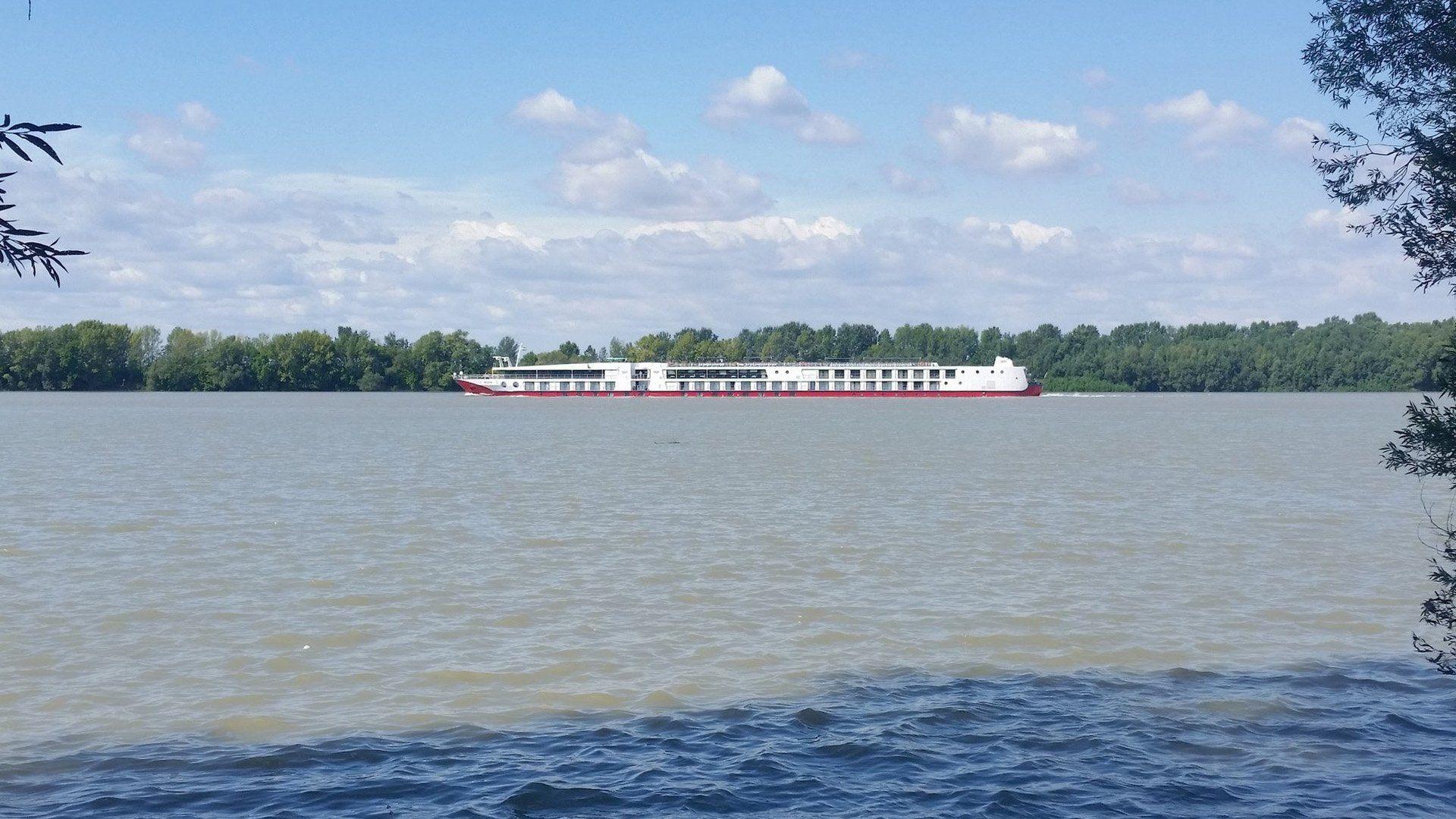 A hajóforgalom nagyban befolyásolja az etetések ütemét, a nagy hullámok gyorsan átmozgatják a sekélyebb területeket