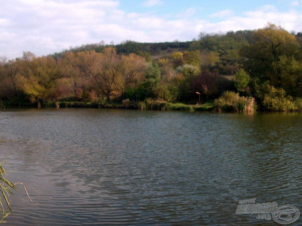 A Látóhegyi I. tó