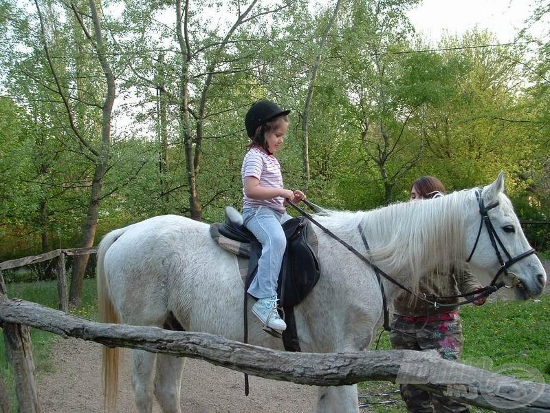 Dóra lányom nagyon élvezte a lovaglás körüli felhajtást. Az első ijedt pillantások után peckesen ült a nyeregben :-)