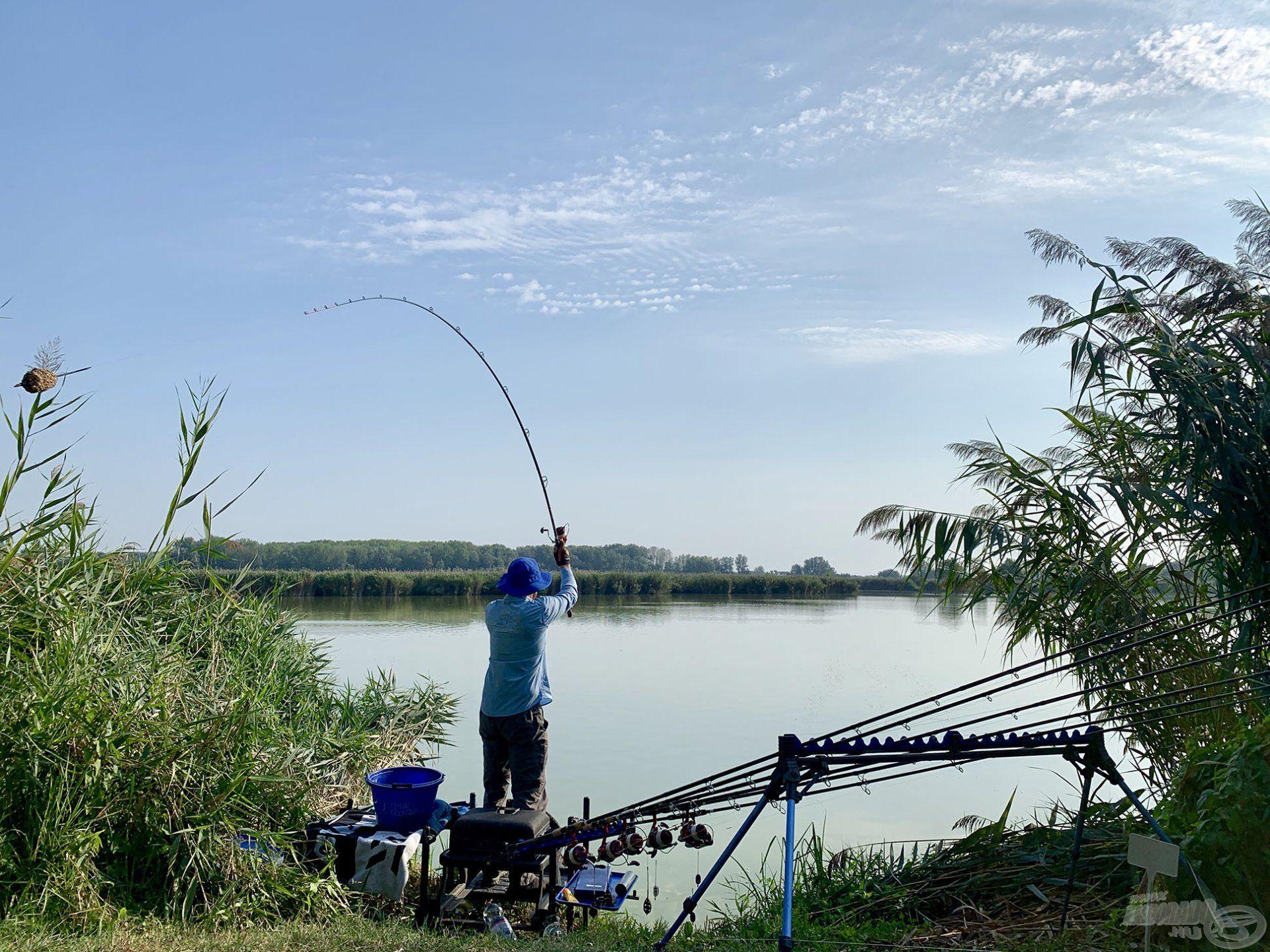 Sóstó egy nagy kiterjedésű egyesületi tó, ahol a távoli horgászat a kifizetődő
