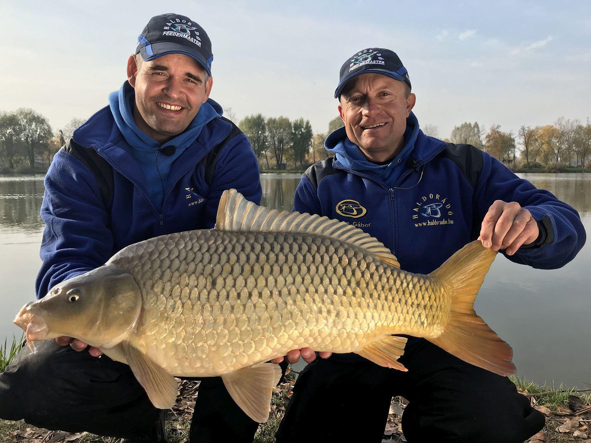 Gyönyörű halakat köszönhetünk a Pro Method Pelleteknek