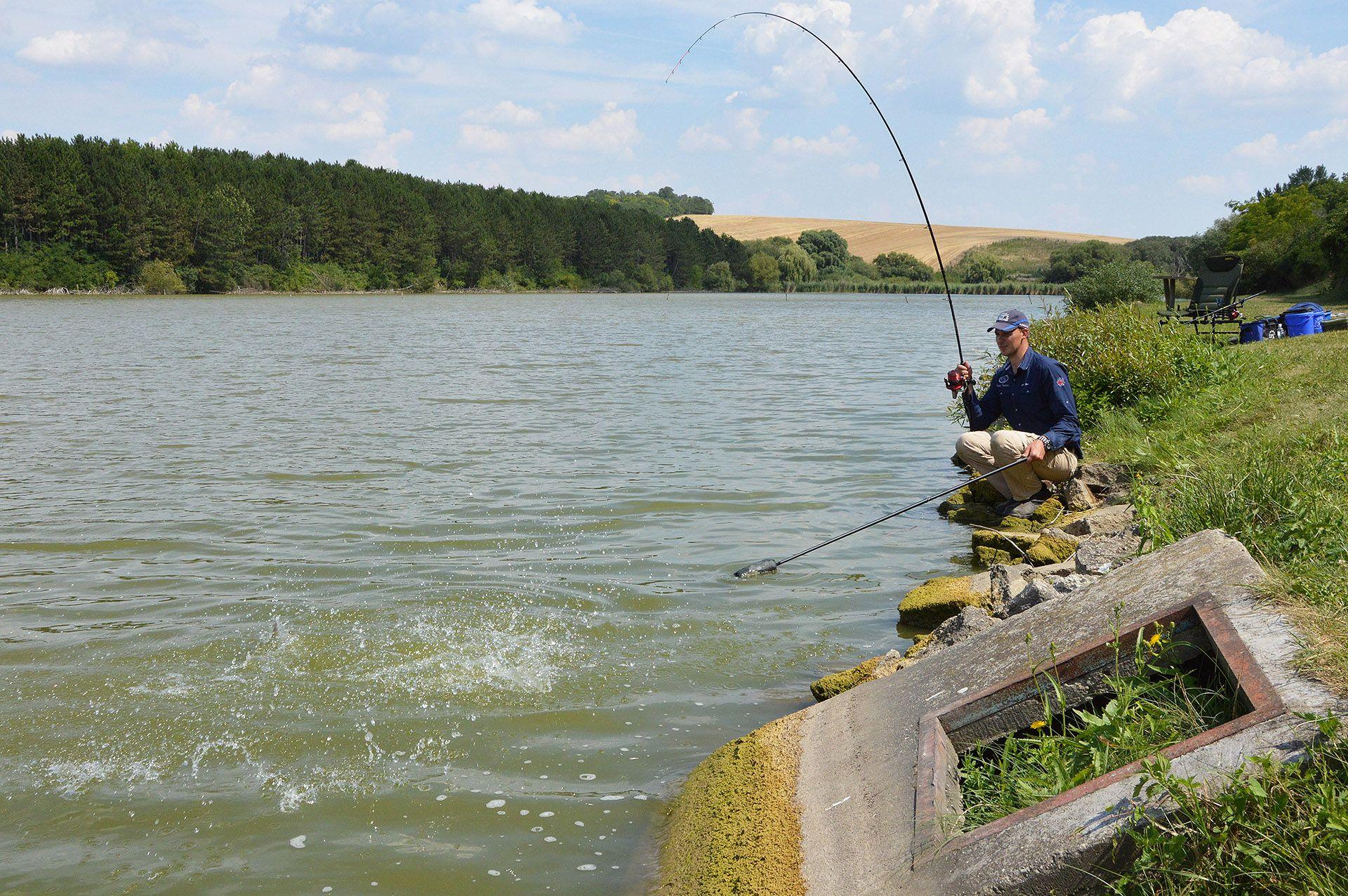 Putz Tamás az elmúlt évet elsősorban az amur horgászatnak szentelte