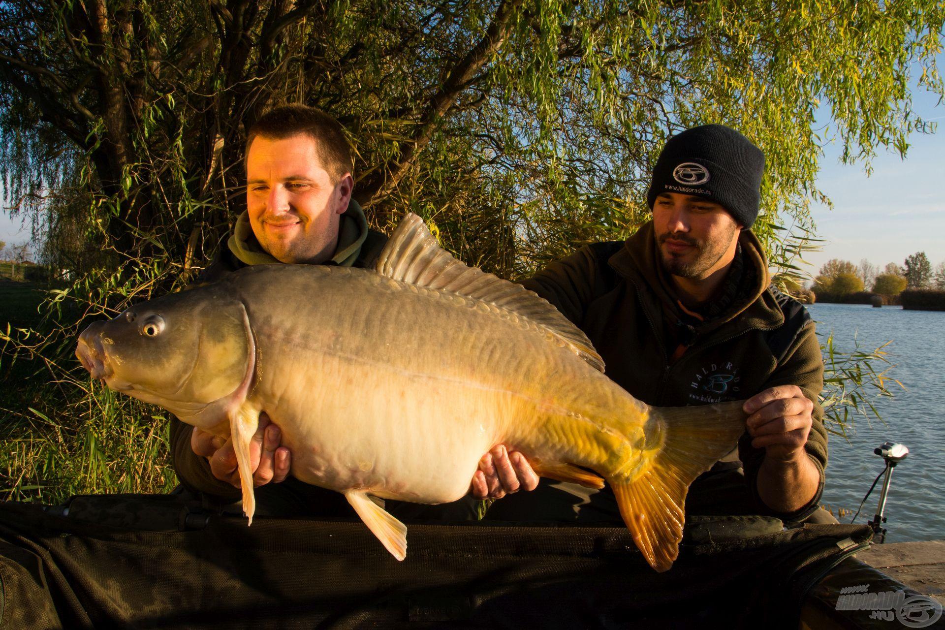 Haskó Tamás és Farkas Szabolcs őszi túrájának legszebb hala szintén egy ilyen kikönnyített, nagyméretű csalikombinációra csábult el