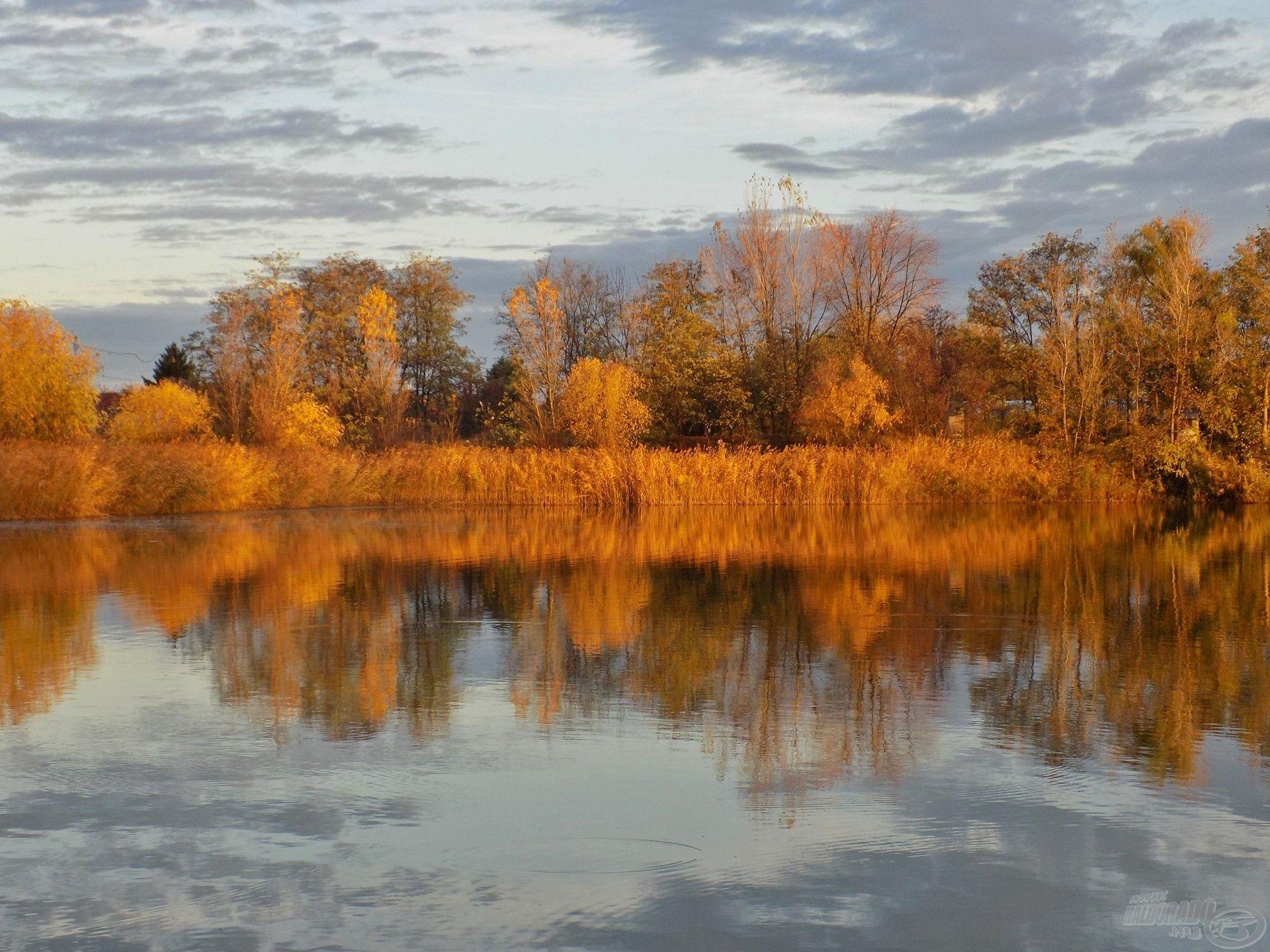 A Szénás Carp Horgásztó olykor idillikus őszi időjárással fogadott kegyeibe…