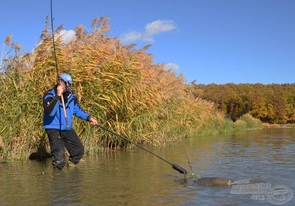 … már biztonságosabb volt halak szákba terelése