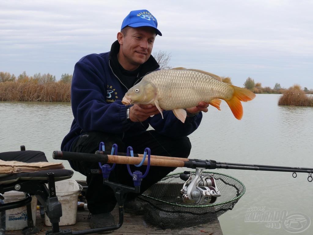 Hideg vízi pontyhorgászat feederrel 2. rész - Szikipontyok Akasztóról