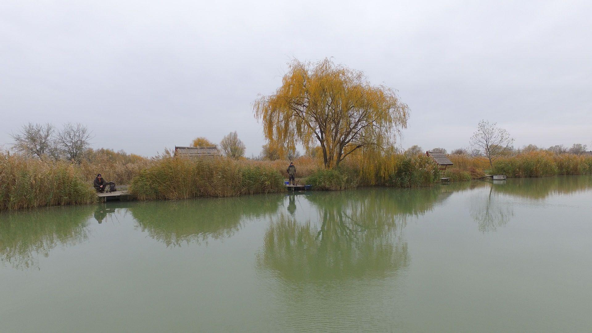 Horgászatunk helyszíne az Akasztó Horgászpark volt